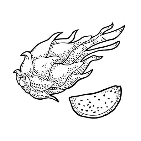 Dragonfruit heel en snijd. Vector vintage gravure zwarte illustratie voor menu, poster. Geïsoleerd op witte achtergrond