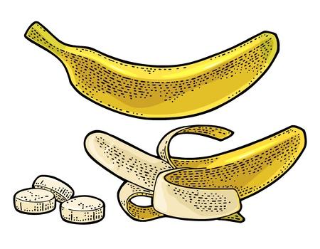 전체, 절반 벗 겨 및 슬라이스 바나나입니다. 벡터 색 손으로 그린 빈티지 조각 메뉴, 웹 및 레이블에 대 한 그림입니다. 흰색 배경에 고립.