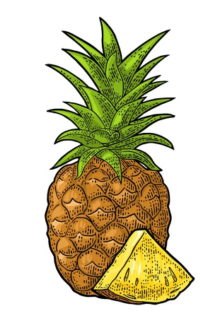 Whole and slice pineapple. Vector color vintage engraving illustration for menu, poster. Isolated on white background