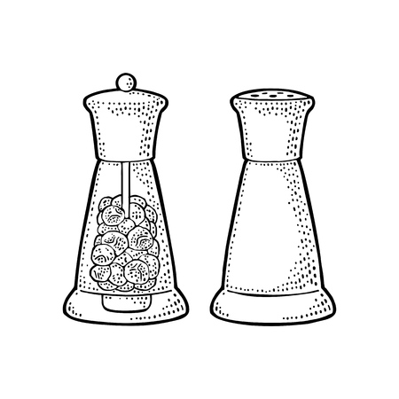 Salt and pepper glass shaker. Engraving vintage vector black illustration. Isolated on white background. Hand drawn design element for label and poster