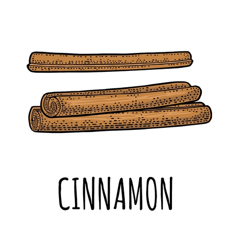 Cinnamon stick set vector black vintage engraving.