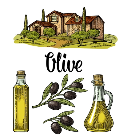 올리브를 얹어 라. 병 유리, 잎, 시골 풍경 별장 빌라