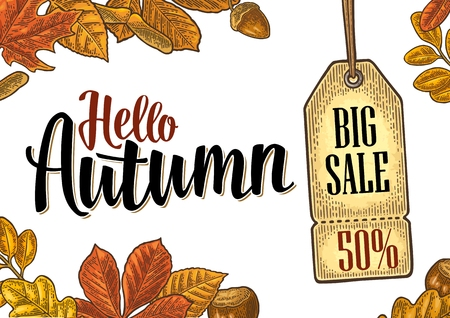 Poster HELLO AUTUMN lettering with set leaf and acorn. Hanging BIG Sale tag with discount price with 50 percent text. Vector vintage engraved illustration on yellow background