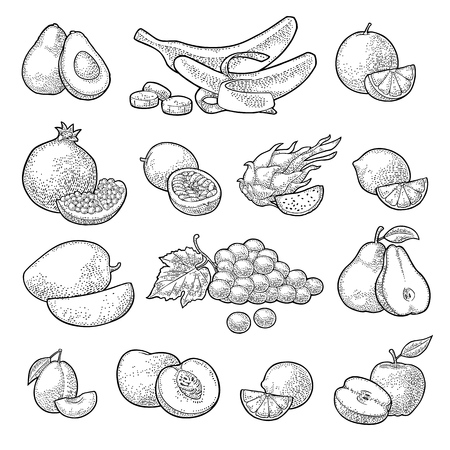 Set tropical fruits. Vector color vintage engraving isolated on white