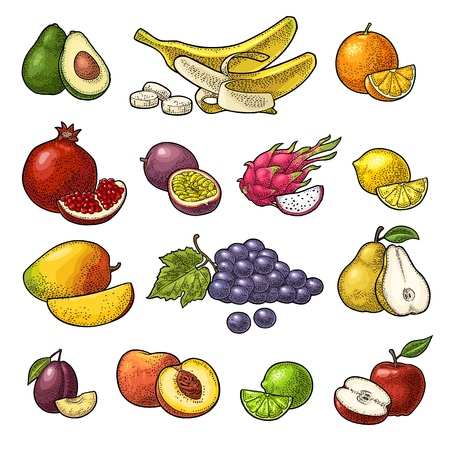 Set tropical fruits. Vector black vintage engraving isolated on white Stock Vector - 92985901