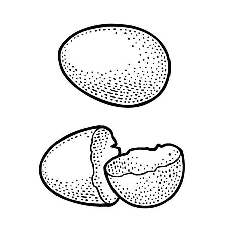 壊れた卵の殻ヴィンテージブラック彫刻イラスト 写真素材 - 92985907