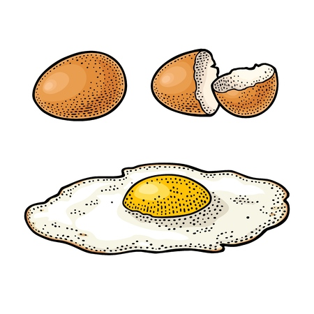 Fried egg and broken shell. Vintage color engraving illustration