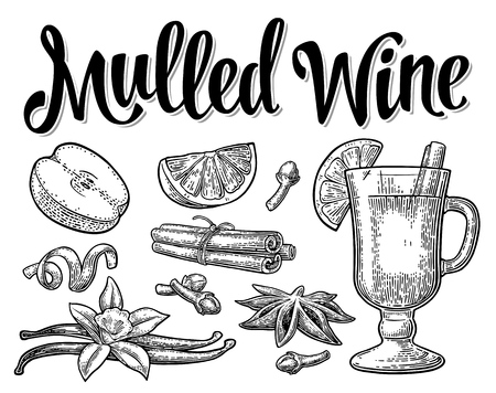 Grog with glass and ingredients. Mulled wine calligraphic lettering. Cinnamon stick, apple, lemon, anise, clove. Isolated on white background. Vector black vintage engraving illustration.