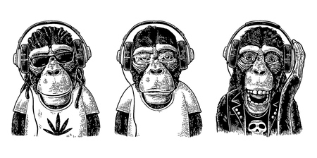 Tyre Monkey in headphones. Vintage black engraving illustration for poster. Isolated on white background Illusztráció