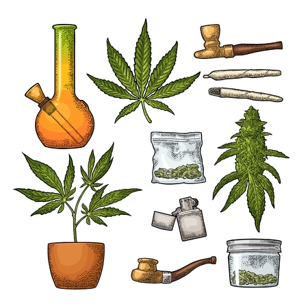 Set Marijuana. Cigarettes, lighter, buds, leaves, bottle, glass jar, plastic bag, pipe for smoking cannabis. Vintage color vector engraving illustration. Isolated on white background.