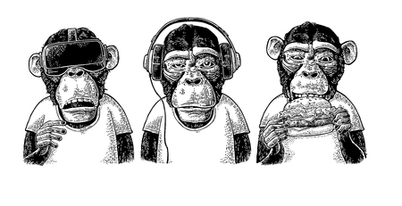 Three wise monkeys in headphones, virtual reality headset, and burger. Not see, not hear, not speak. Vintage black engraving illustration for poster. Isolated on white background. Vettoriali