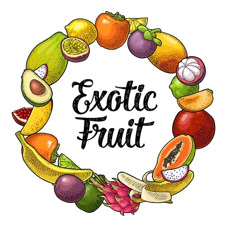 Circle shape set fruits. Vector vintage color engraving illustration for poster, label and menu. Isolated on white background. Hand drawn design element