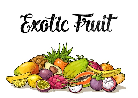Set exotic fruits with calligraphic lettering. Vector vintage color engraving