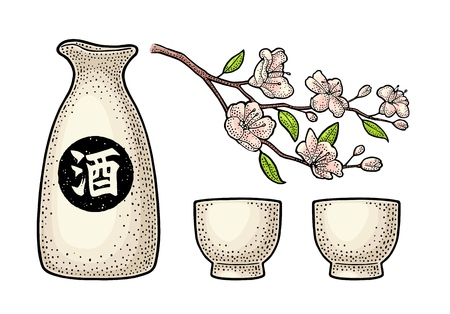 Sake glass, bottle and japan calligraphic hieroglyph. Sakura blossom. Cherry branch with flowers and bud.