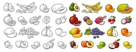 Set fruits. Mango, lime, banana, maracuya, avocado, dragon, lemon, orange, garnet, peach, apple, pear, grape, plum, passion, mangosteen, papay, persimmon, cherry. Vector color vintage engraving Stock Illustratie