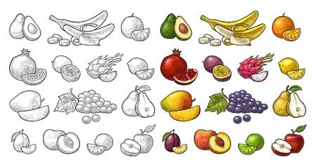 Set fruits. Mango, lime, banana, maracuya, avocado, dragon, lemon, orange, garnet, peach, apple, pear, grape, plum, passion. Vector black vintage engraving illustration isolated on white Иллюстрация
