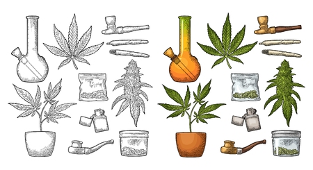 Set Marijuana. Cigarettes, pipe, lighter, buds, leaves, bottle, cigarette, glass jar, plastic bag, pipe for smoking cannabis. Vintage black and color vector engraving illustration. Isolated on white background