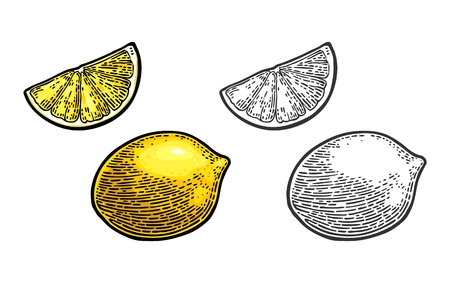 Lemon Slice and and whole illustration. Иллюстрация