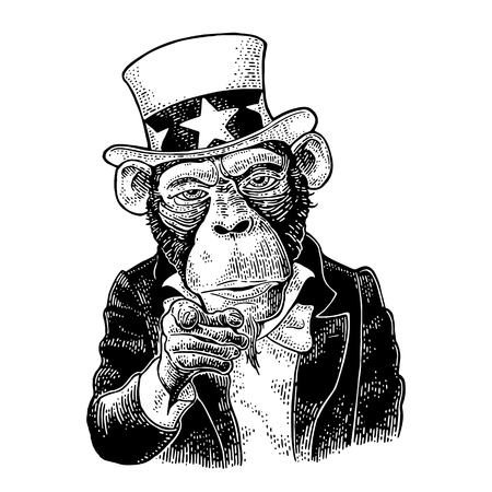Monkey Uncle Sam with pointing finger at viewer, from front.