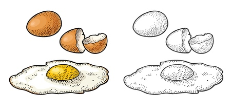 Fried egg and broken shell. Vintage color engraving illustration.