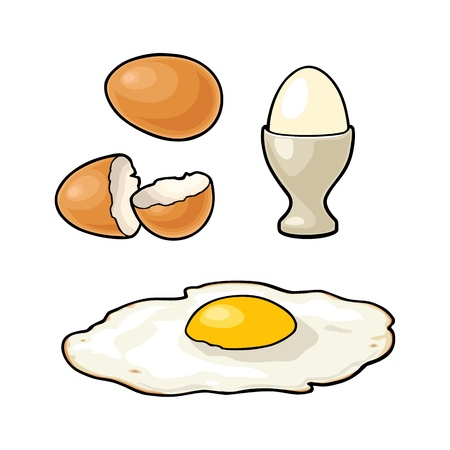 Fried egg and broken shell. Vintage color vector engraving illustration for poster and label. Isolated on white background.