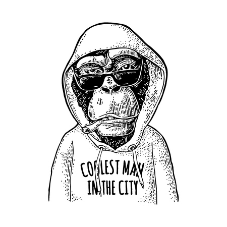 Vintage monkey hipster dressed in the hoodie with lettering coolest man in the city.