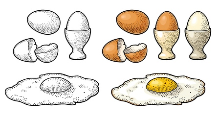 Fried egg and broken shell. Vintage color and black vector engraving illustration for poster and label. Isolated on white background. Illustration