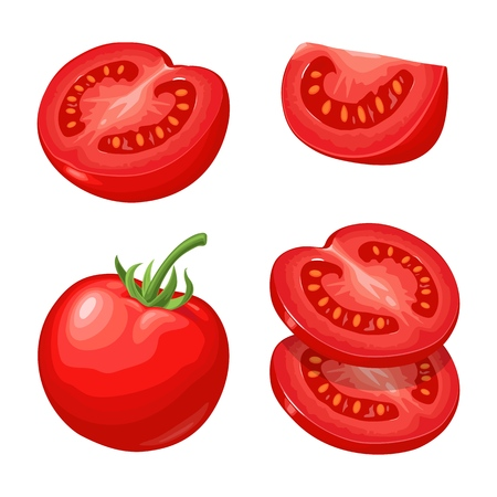 Branch, whole and slice tomatoes Vector flat color illustration. Иллюстрация