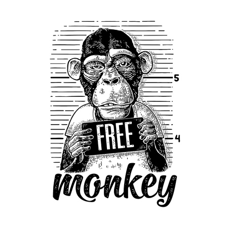 Monkey holding a police department banner Stock Illustratie