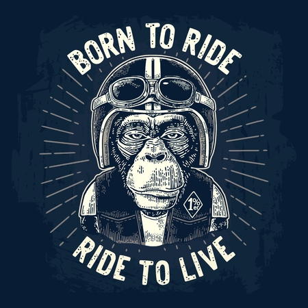 Monkey biker dressed in the motorcycle helmet, waistcoat and glasses. Born to ride lettering. Vintage white engraving illustration, isolated on dark blue background for poster, t-shirt print bike club. Illustration