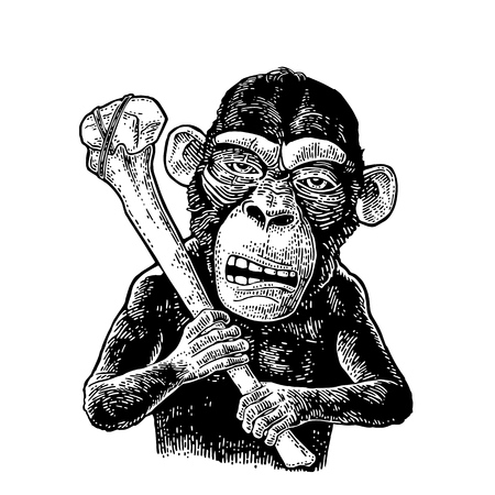 Monkey holding tibia. Vintage black engraving illustration for poster and t-shirt design. Isolated on white background. Hand drawn design element