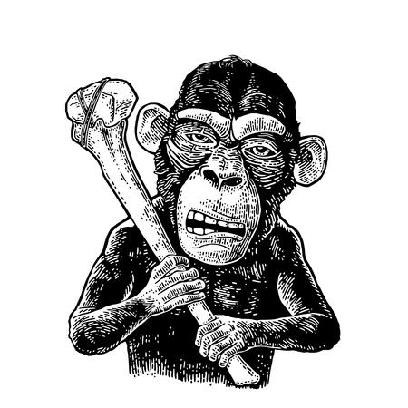 Monkey holding tibia. Vintage black engraving illustration for poster and t-shirt design. Isolated on white background. Hand drawn design element