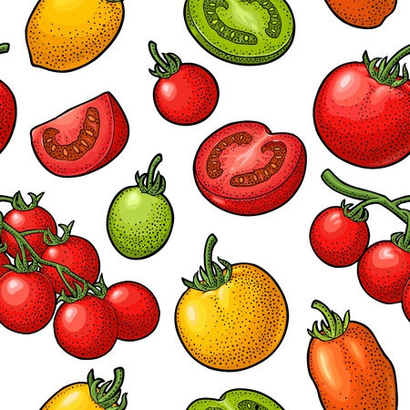 Seamless pattern with tomato half, slice and branch. Vintage color vector hand drawn engraving illustration. Ilustração