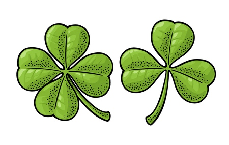 Good luck four and three leaf clover. Vintage color vector engraving illustration isolated on white background. Hand drawn design element for label, poster, web.