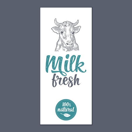 Template poster or label with head cow. Milk Fresh calligraphic handwriting lettering. Vintage monochrome vector engraving illustration. Isolated on white background.