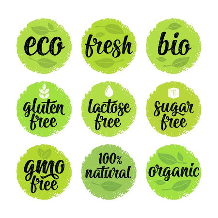 グルテン、ラクトース、砂糖、Gmoフリー、バイオ、エコ、葉、立方体、ドロップと新鮮な書き込み手書き文字。緑の円のステッカーにベクターホワ