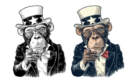 Monkey Uncle Sam with pointing finger at viewer, from front. I Want You. Vintage color engraving illustration for recruiting poster. Isolated on white background. Hand drawn design element