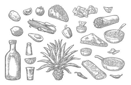 メキシコの伝統的な食べ物と飲み物セット。テキーラ、グアカモレ、ケサディーヤ、エンチラーダ、ブリトー、タコス、ナチョス、チリコンカーン  イラスト・ベクター素材