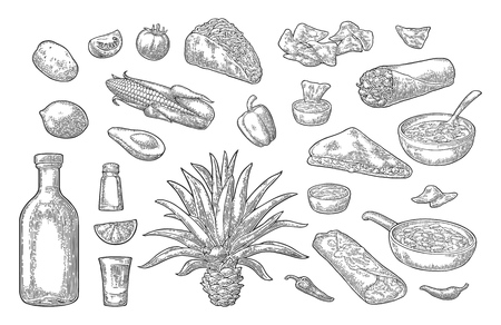 Mexican traditional food and drink set. Tequila, Guacamole, Quesadilla, Enchilada, Burrito, Tacos, Nachos, chili con carne with ingredient. Vector vintage black engraving isolated on white background