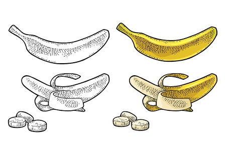 Whole, half peeled and slice banana. Vector color and black hand drawn vintage engraving Illustration for menu, web and label. Isolated on white background.