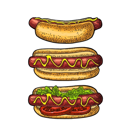 Hotdog with tomato, mustard, leave lettuce. Top and side view.