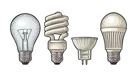 Evolution type electric lamp. Light incandescent bulb, halogen, cfl and led. Vector vintage color engraving illustration on white background. Hand drawn design element for label and poster