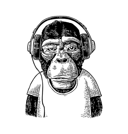 Monkey dressed t-shirt hear headphones. Vintage black engraving Vectores