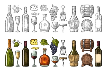 Set drinks made from grape. Wine, brandy, champagne bottle, glass, barrel, cheese, barrel, bunch of grapes with berry and leaf. Vintage color engraving vector illustration. Illustration