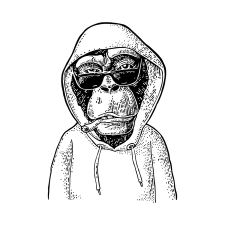 Monkey hipster with cigarette and sunglasses dressed in the hoodie. Vintage black engraving illustration. Isolated on white background. Hand drawn design element for poster