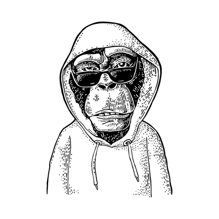 Monkey hipster with sunglasses dressed in the hoodie. Vintage black engraving illustration. Isolated on white background. Hand drawn design element for poster Stock Illustratie