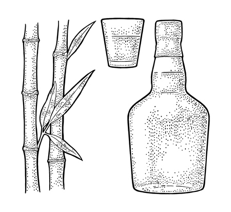 Glass and bottle of rum with sugar cane. Vintage vector engraving illustration for label, poster,. Isolated on white background. Hand drawn design element for label, poster, web, invitation to party