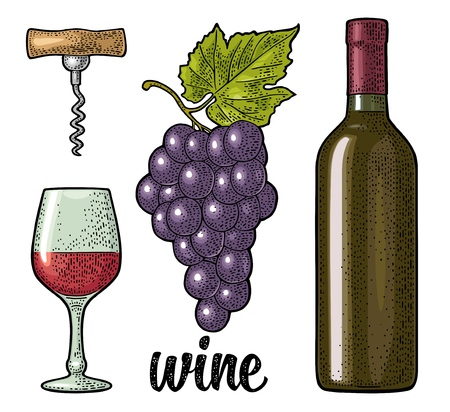 Wine set with handwriting lettering. Bottle, glass, corkscrew, bunch of grapes with berry and leaf. Vintage color engraving vector illustration isolated on white background. For label poster, web.