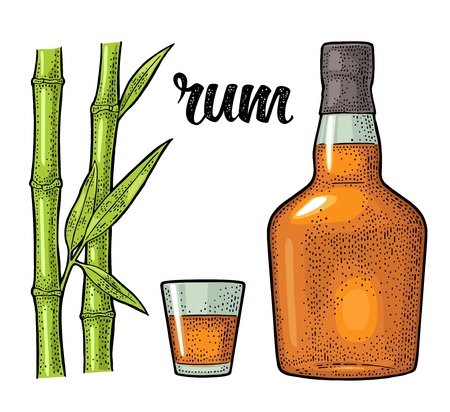 Glass and bottle of rum with sugar cane. Engraving Stock Vector - 102221602