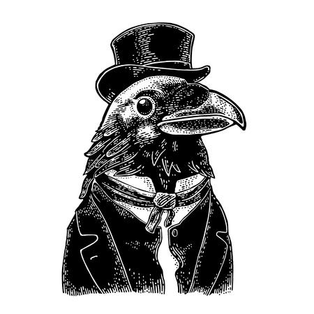 Raven gentlemen dressed in suit, tie and rectangular cylinder. Vintage black engraving